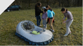mini hovercraft rental
